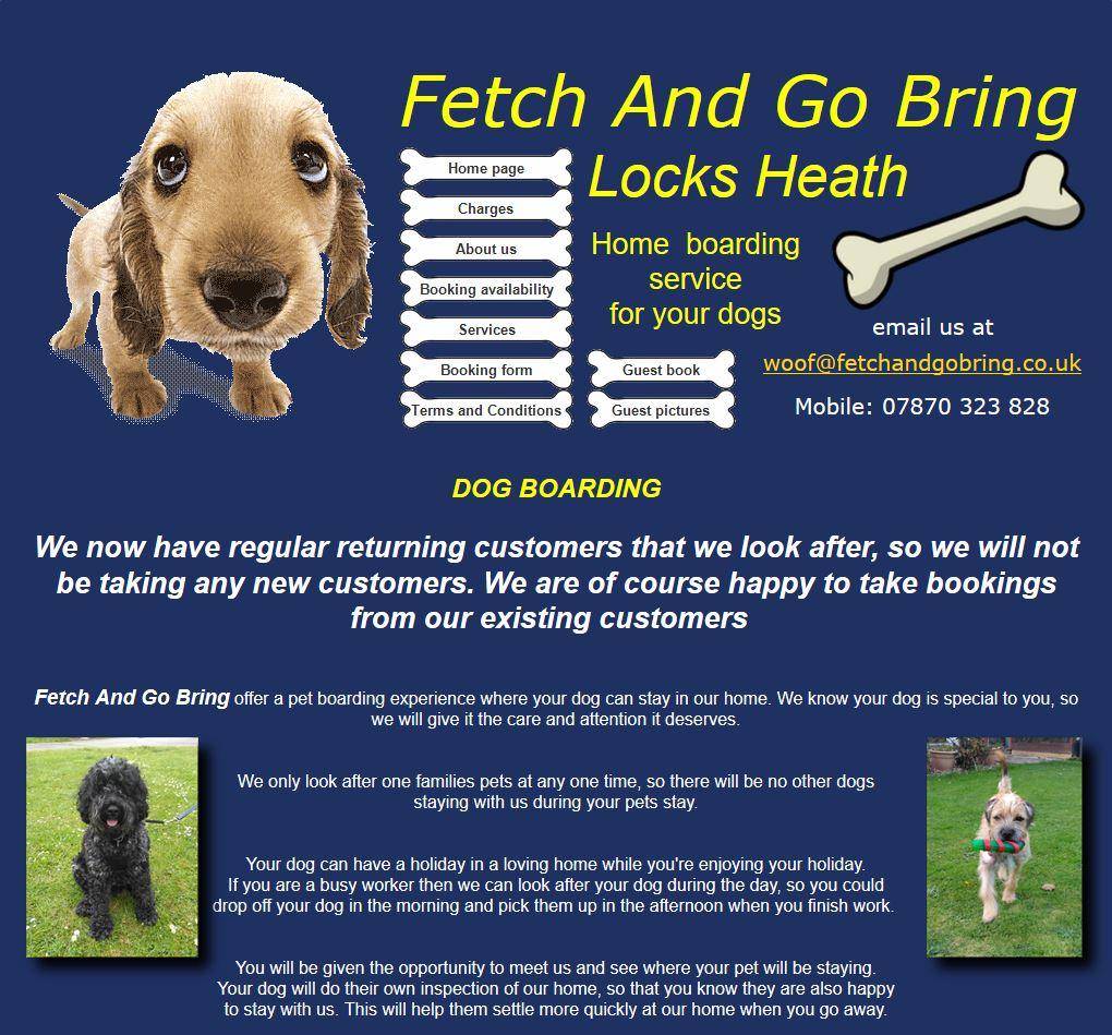 fetch and go bring